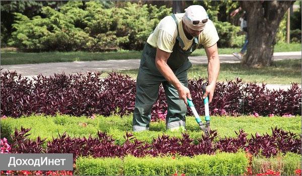 Профессия садовник