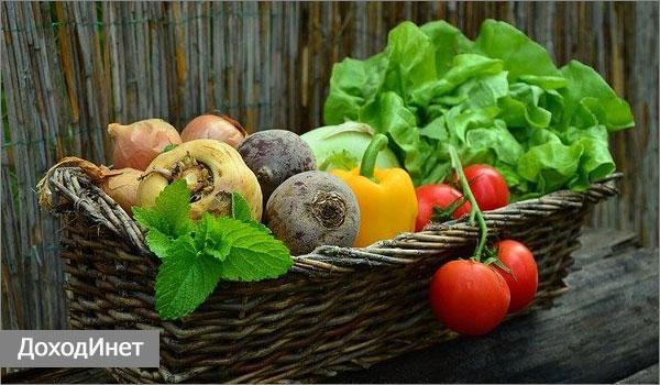 Бизнес на сборе овощей и фруктов