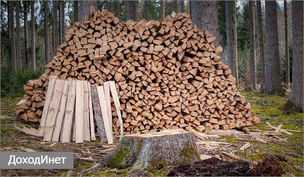 Заготовка дров как бизнес